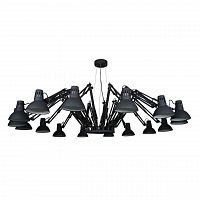 Люстра Arte Lamp Ragno Black A2043SP-16BK Dear Ingo